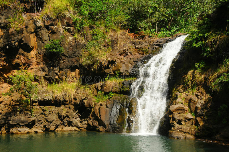 Waimea Tal-Wasserfall, Oahu Hawaii stockbild