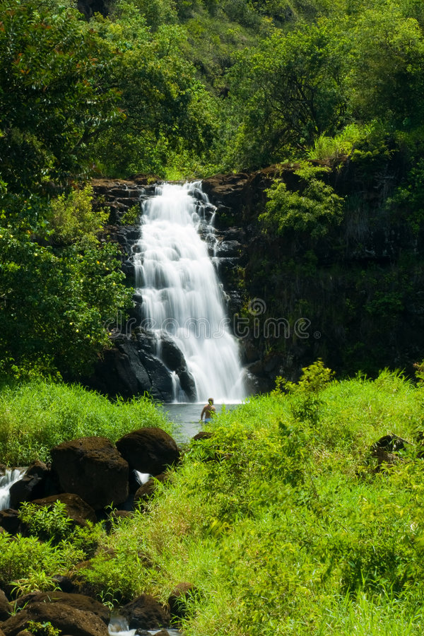 Waimea Wasserfall lizenzfreies stockfoto
