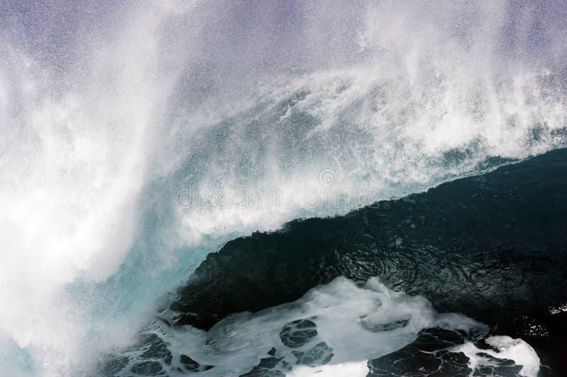Waimea Wave 1 stock images