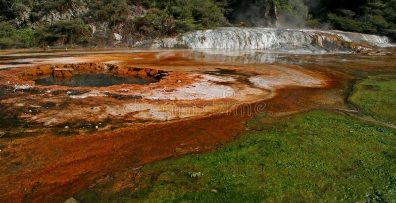 Waiotapu Thermal Pool Royalty Free Stock Photography