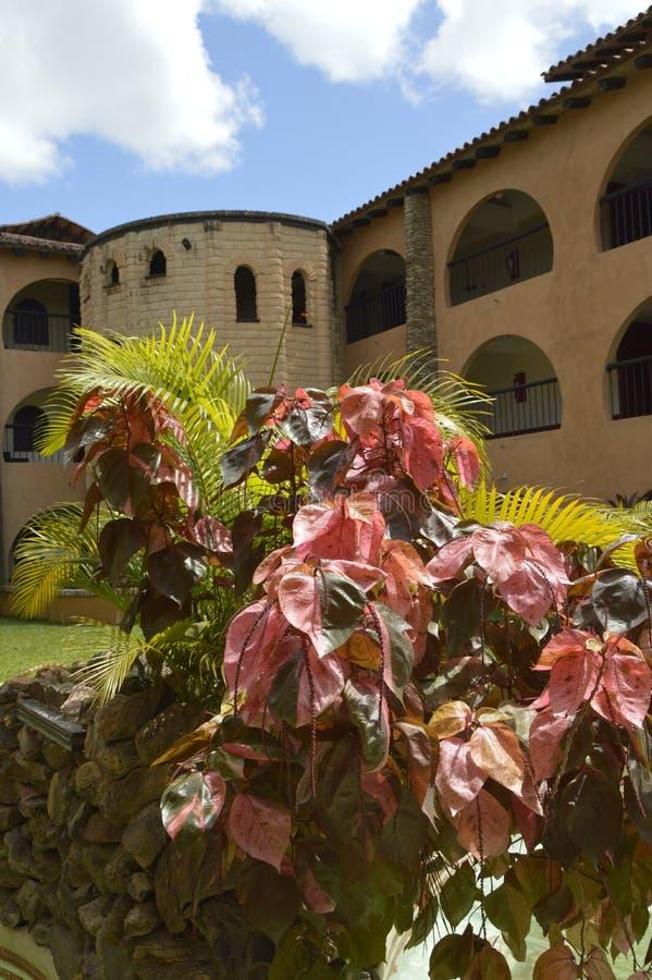 Waipa hotel, Guayana miasto Wenezuela obraz royalty free