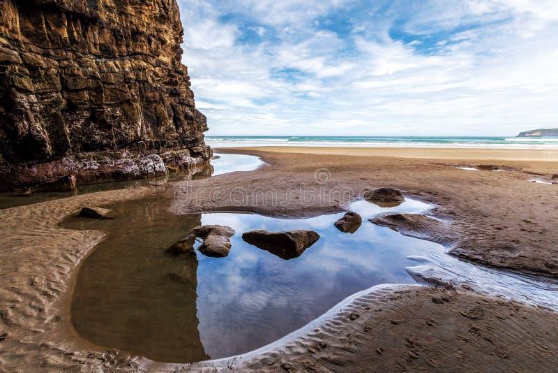 Waipati strand, domkyrkagrotta, Catlins, Nya Zeeland royaltyfri bild