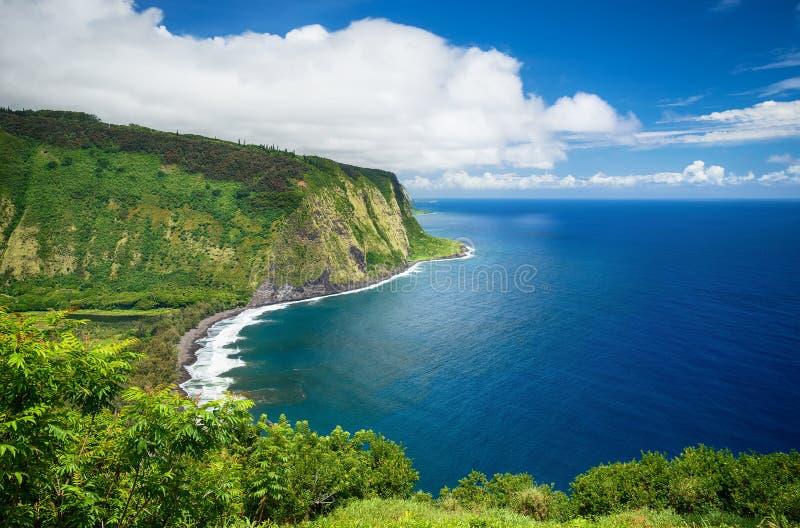 Waipio在大岛夏威夷的谷视图 免版税库存图片