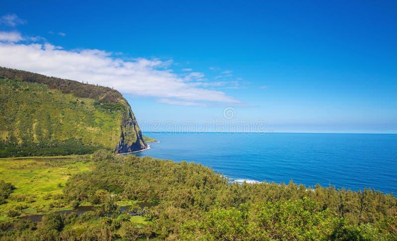 waipio долины Гавайских островов стоковое изображение