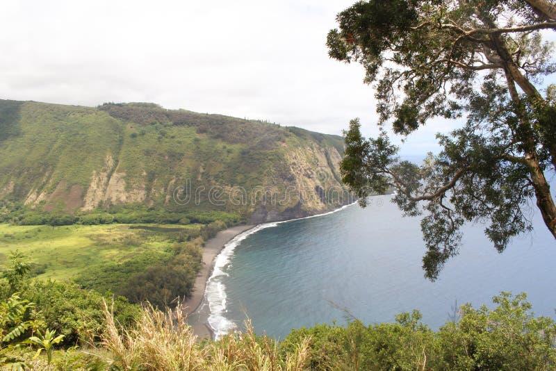 "Waipio för WaipiÊ"" nolla-dal dal i Hawaii den stora ön Forest Beach arkivfoton"
