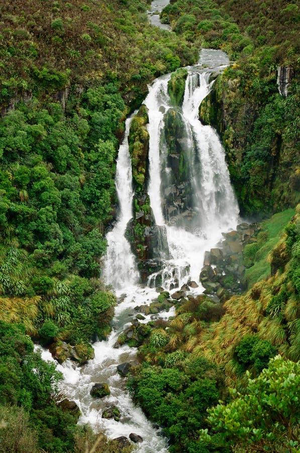 Waipunga Waterfall, New Zealand royalty free stock images