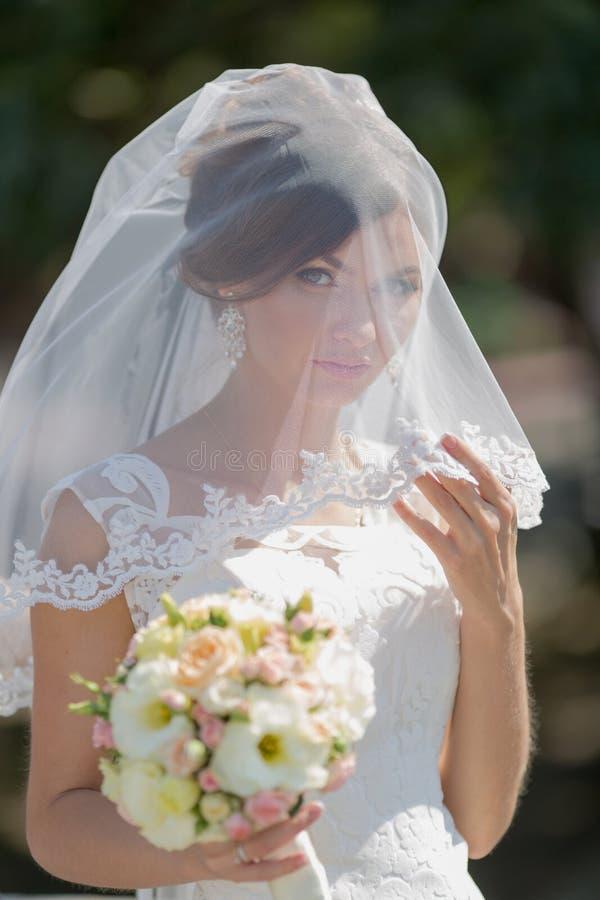 Waist up portrait of bride stock photography