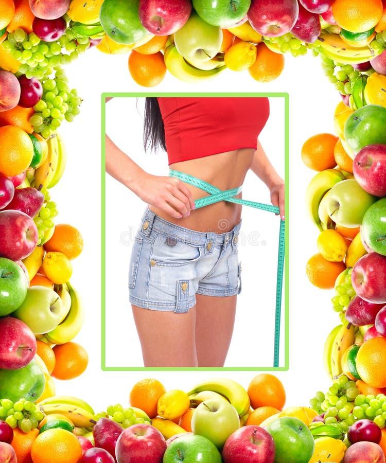 waistline royaltyfri fotografi