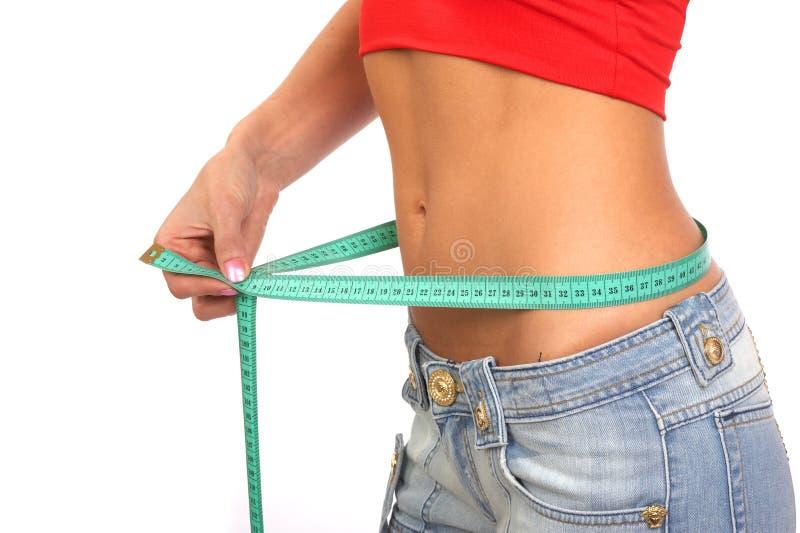 waistline fotografering för bildbyråer