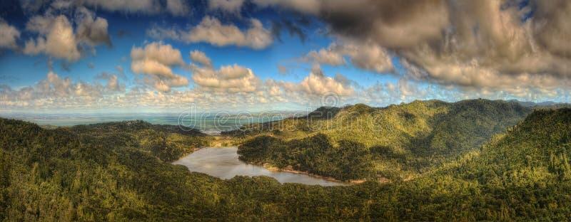 Waitakere varia parco regionale Nuova Zelanda fotografie stock libere da diritti