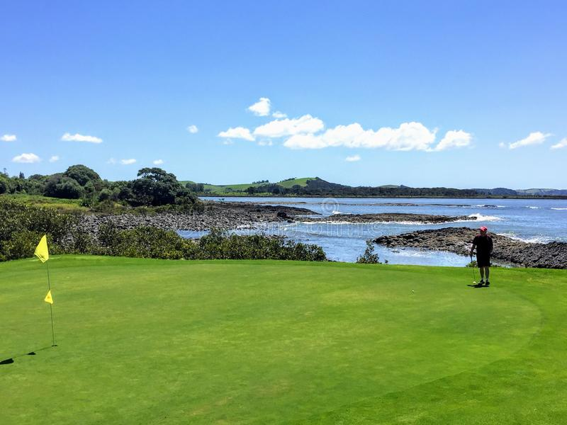 A man lining up a putt while golfing in Waitangi, North Island, New Zealand royalty free stock photography