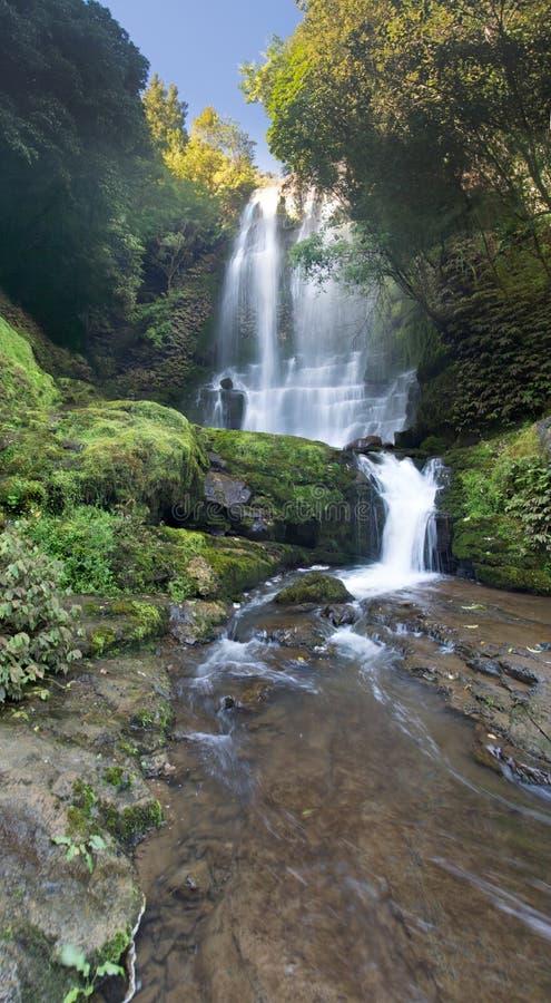 Waitangurudalingen, Taranaki, Nieuw Zeeland royalty-vrije stock foto's