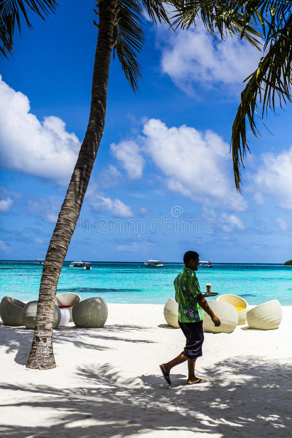 Download Waiter Carrying A Drink On A Tropical Beach Resort In The Maldives Editorial Stock Photo - Image of juice, holiday: 75985138