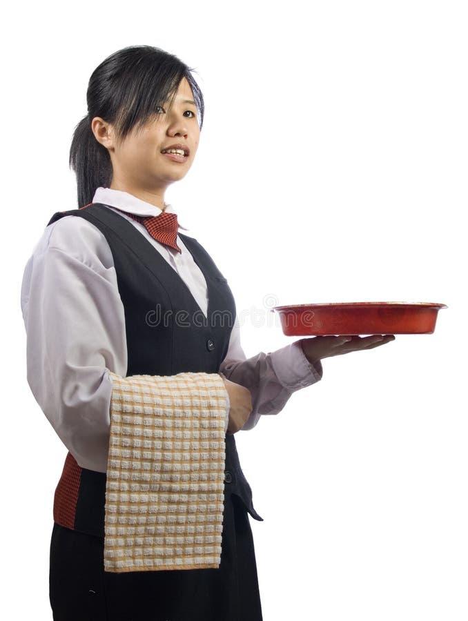 waiteress royaltyfri fotografi