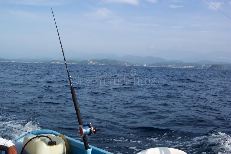 Download Waiting... stock photo. Image of sailfish, offshore, marlin - 17916