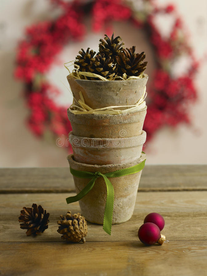 Download Waiting For Christmas stock photo. Image of cone, christmas - 26554356