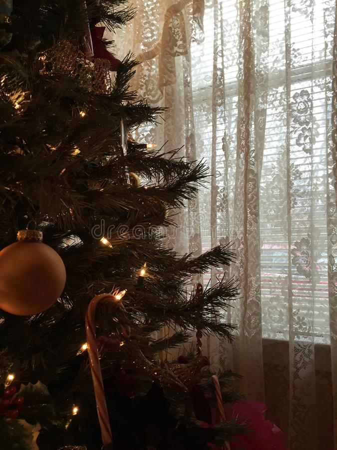 Waiting for Christmas Day stock photo