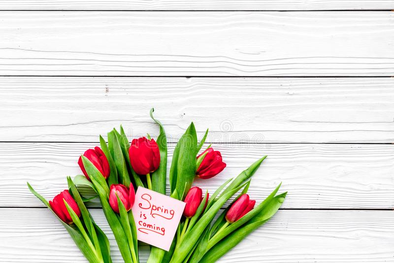 Waiting for spring. Spring is coming lettering near bouqet of tulips on white wooden background top view space for text. Waiting for spring. Spring is coming stock photos