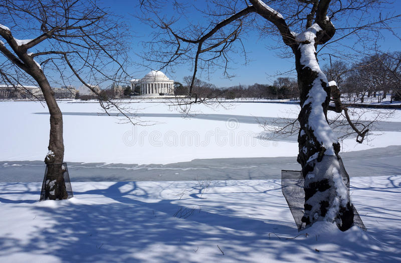 Waiting for Spring at the Tidal Basin royalty free stock image