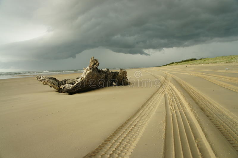 Download Waiting For The Thunderstorm Stock Photo - Image: 24234586
