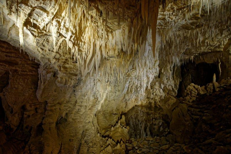 Waitomo scava, isola di Nort della Nuova Zelanda, belle caverne conosciute per le lucciole fotografia stock