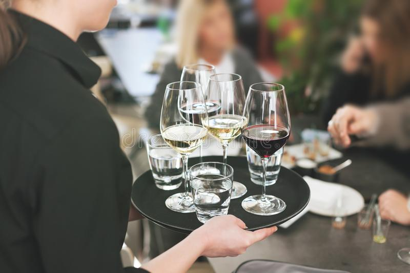 waitress at restaurant serving white and red wine royalty free stock photography