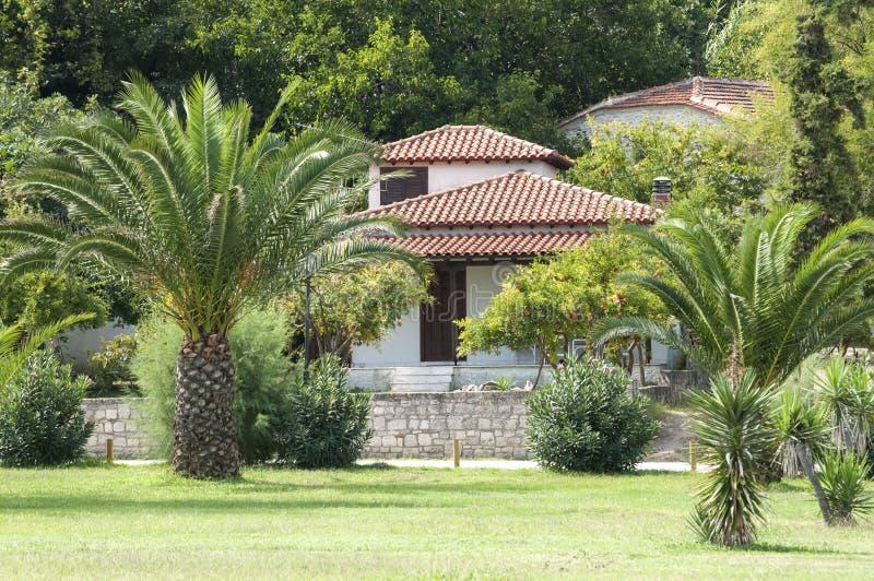 Wakacje letni dom z palmami zdjęcie stock