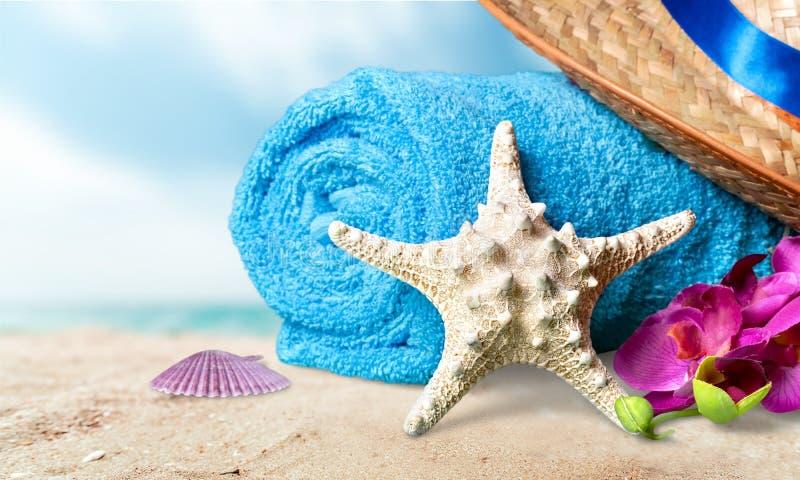 Wakacje Letni plaża fotografia royalty free