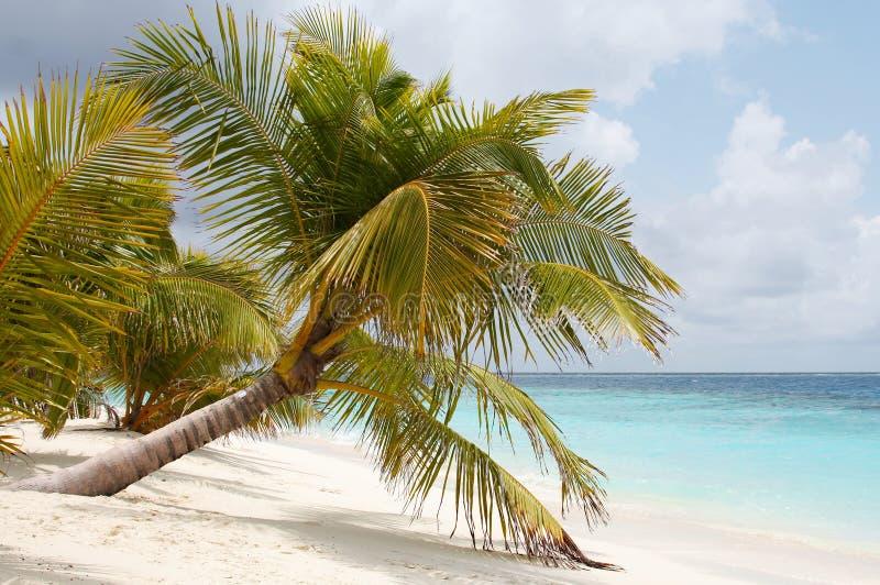 wakacje luksus Malediwy zdjęcia royalty free