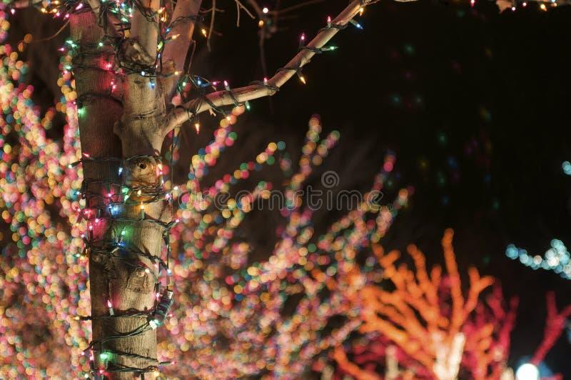 wakacyjni światła zdjęcie stock