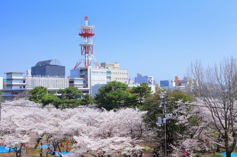 Wakayama in Japan royalty free stock photography