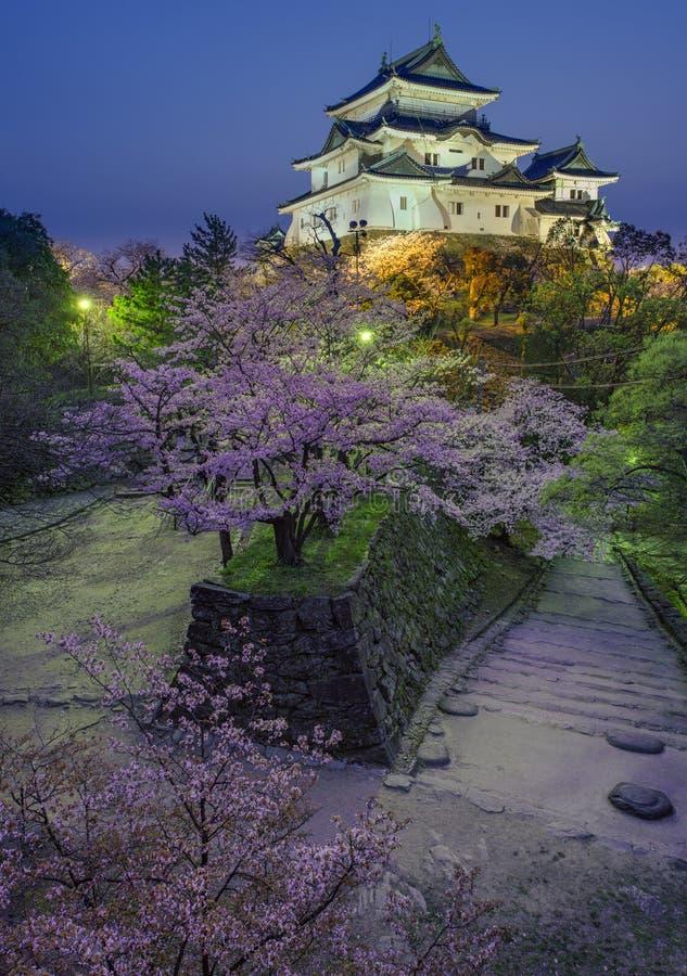 Wakayama-Schloss Kirschblüte lizenzfreie stockfotografie