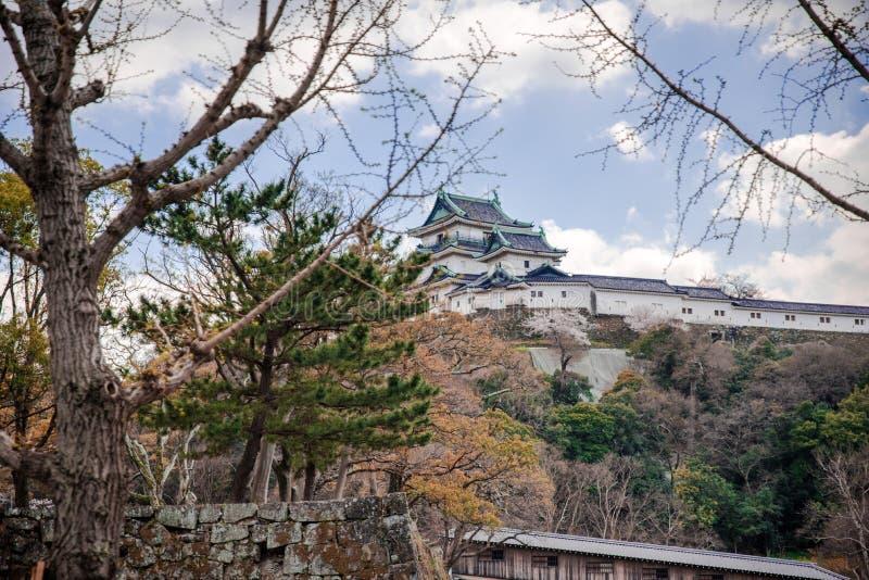 Wakayama-Schlossstellung auf dem Hügel mit Kirschblüten im foregound lizenzfreies stockbild