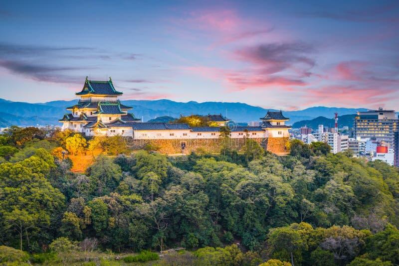 Wakayama stad, Japan horisont royaltyfria bilder