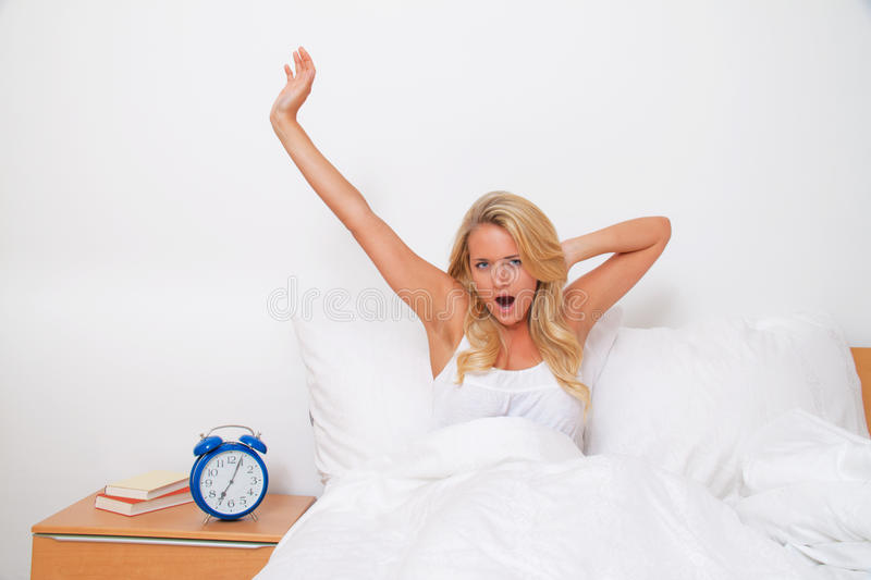 Download Wake Up And Leave. Bet The Morning In Good Spirits Stock Photo - Image of agreed, dream: 18016942