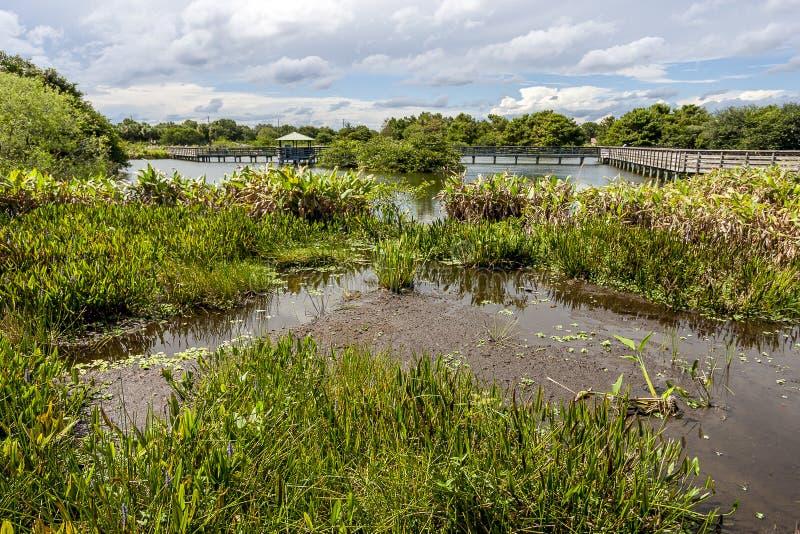 Wakodahatchee Wetlands in Delray Beach. Florida USA royalty free stock photos