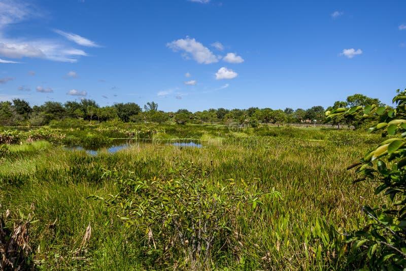 Wakodahatchee Wetlands in Delray Beach. Florida USA stock photography