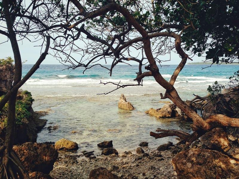Walaranodorp, Malekula-Eiland/Vanuatu - 9 juli 2016: het overweldigen van overzees kust tropisch vreedzaam oceaanstrand met overh stock foto