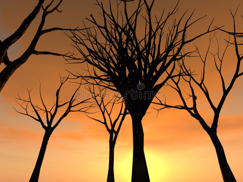 Wald 21 lizenzfreie stockbilder