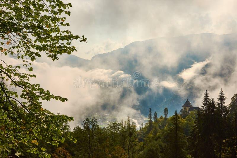 Wald auf einem Hügel zwischen den Bergen über Hallstatt in Austri lizenzfreie stockbilder
