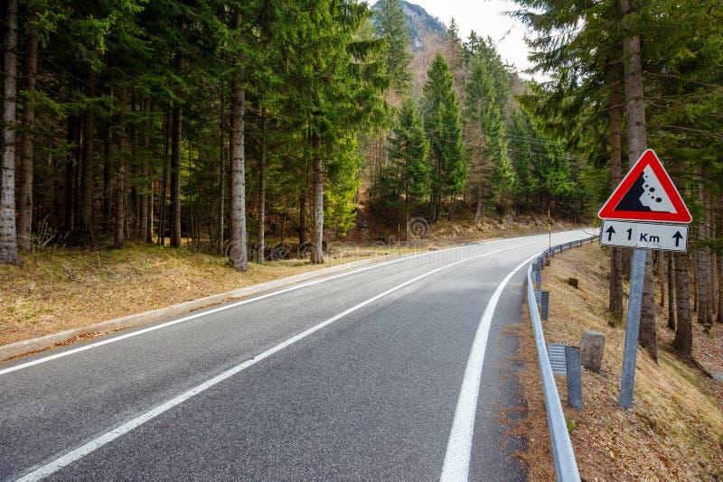 Wald der Straße im Frühjahr lizenzfreie stockbilder