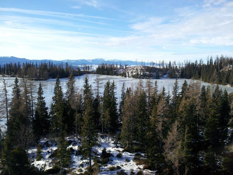 Wald- und Gebirgsnatürlicher Bereich lizenzfreie stockfotografie