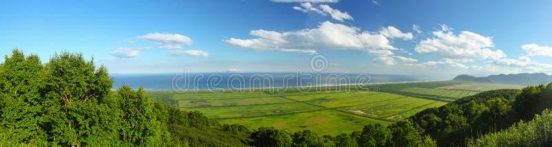 Wald und Ozean stockbilder