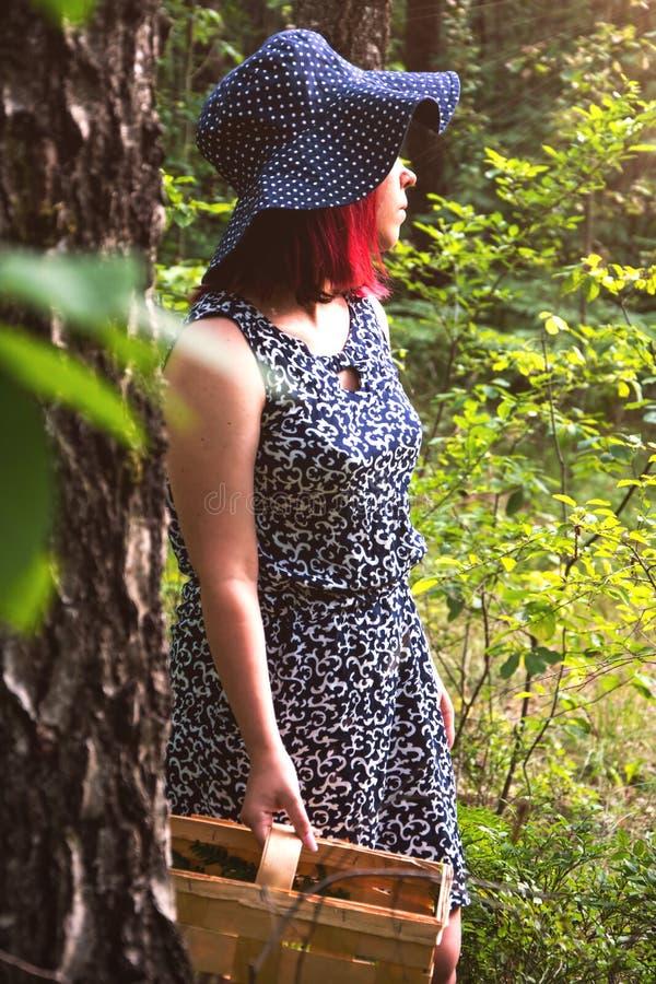 Waldbeerenblaubeeren, Geschenke des Waldes sammelnd stockfotografie