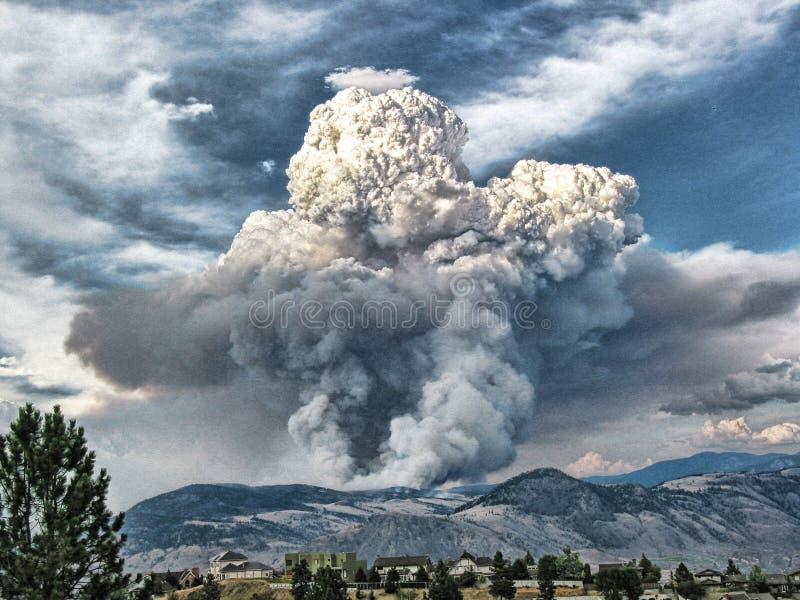 Waldbrand-Rauch Foto-Kunst stockfotografie