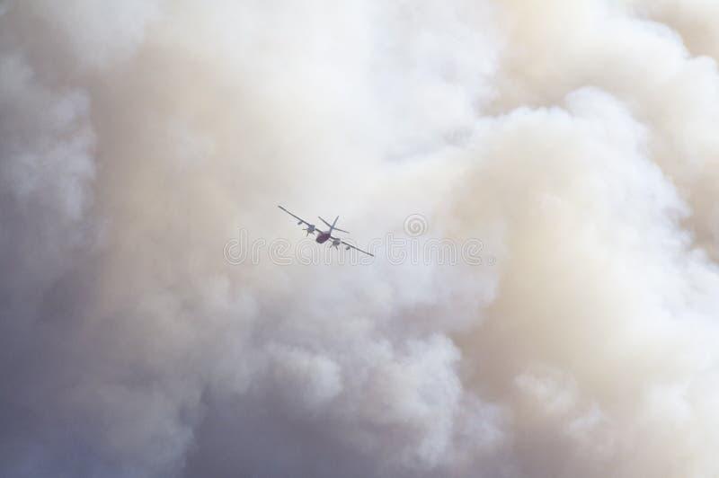Waldbrandkämpfen lizenzfreie stockbilder