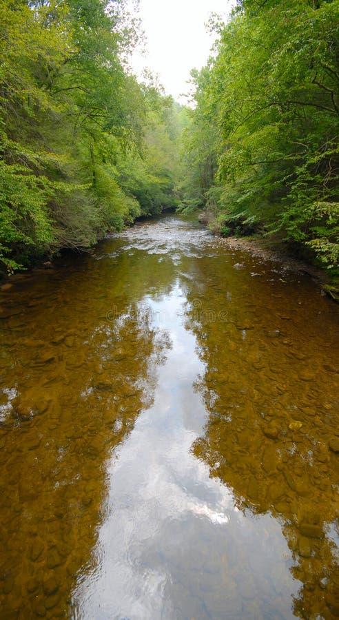 Waldfluß stockfoto