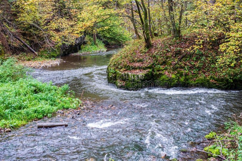 Waldgebirgsfluss mit Wasserfall ?ber den Felsen lizenzfreies stockfoto