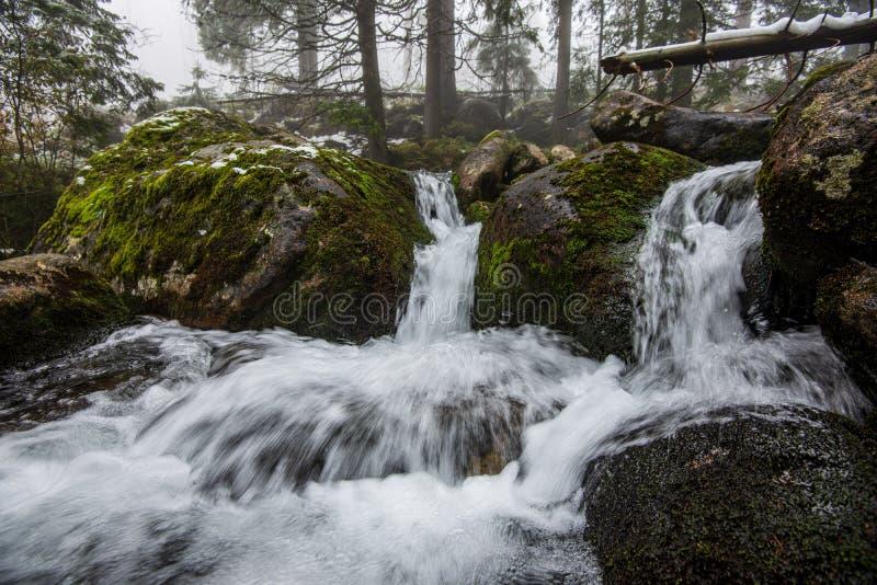 Waldgebirgsfluss mit Wasserfall ?ber den Felsen lizenzfreie stockbilder