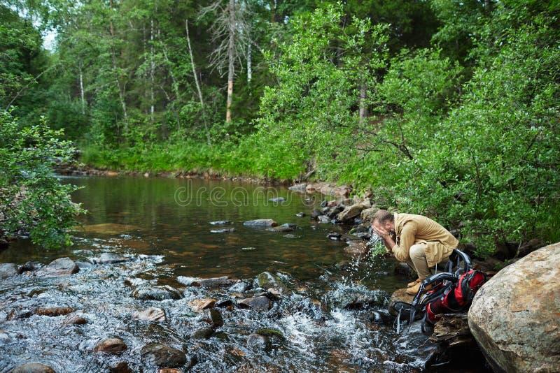 Waldhygiene stockfoto